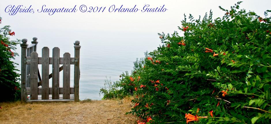 Cliffside Saugatuck 2095